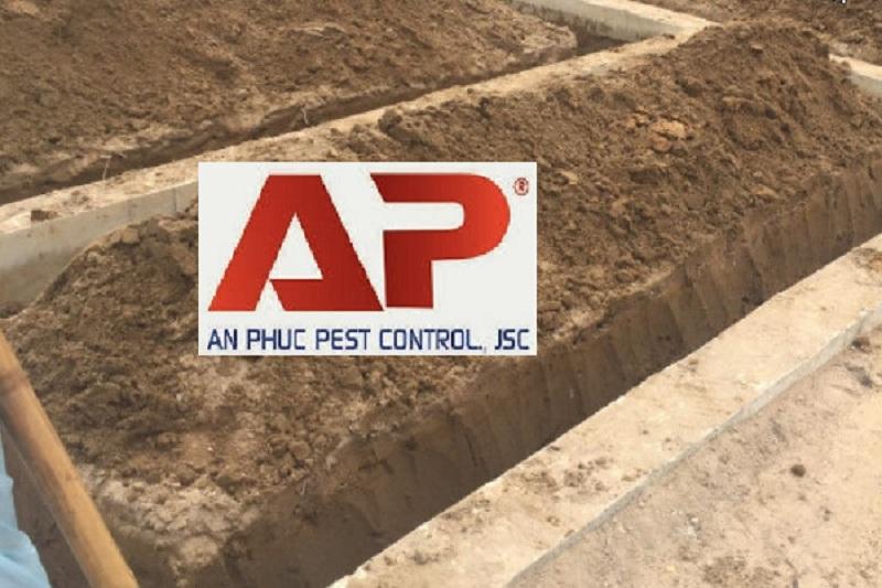 Biện pháp phòng chống mối công trình xây dựng, nhà ở
