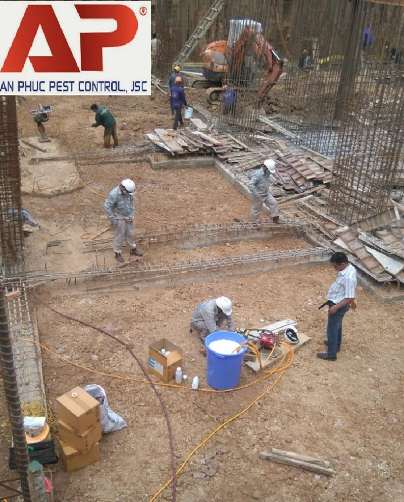 Phòng chống mối mọt cho nhà ở và công trình xây dựng