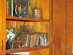 Cách diệt mối tận gốc trong tủ gỗ